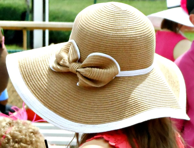 brown sun hat bow