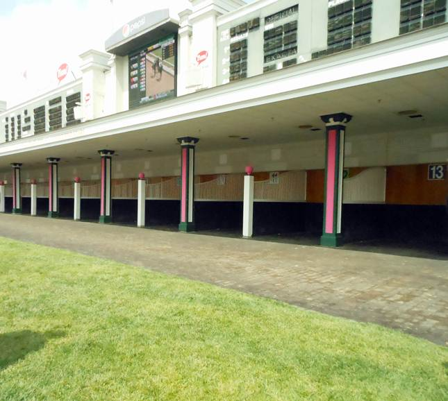Churchill Downs paddock