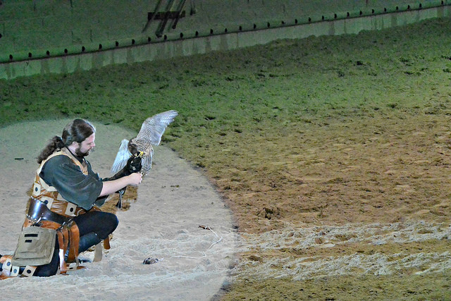 Falcon Handler Medieval Times
