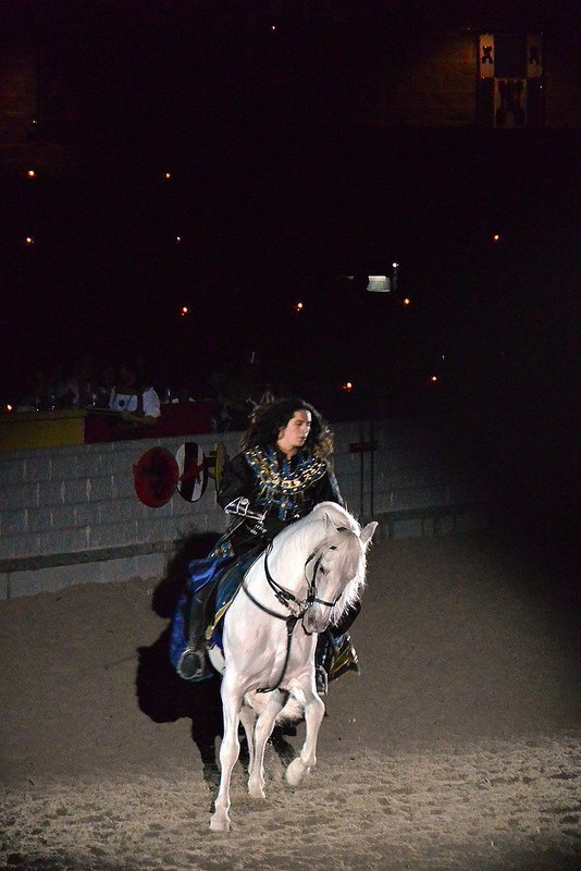 Medieval Times Andalusian