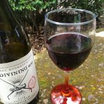 The Divining Rod Pinot Noir, Willamette Valley, Orgeon