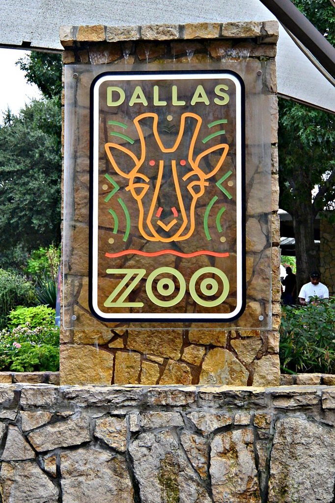dallas-zoo-21