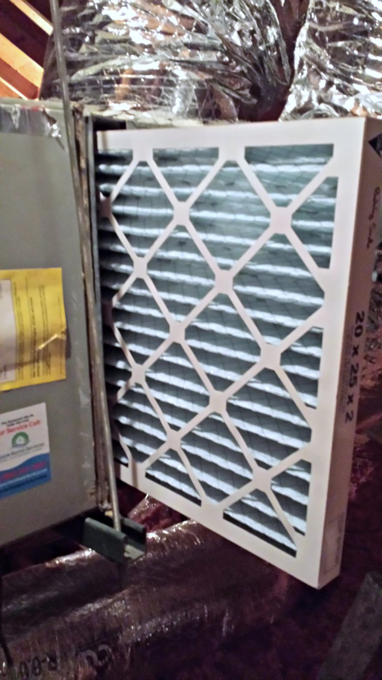 Our Experience With Nordic Pure Air Filters Three